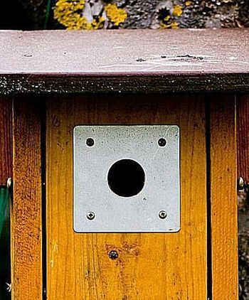 Learn The Best Bird House Hole Sizes For Common Backyard Nesting Birds Includes How To Increase Or Decrease Hole Sizes Bird House Bird Houses Bird House Kits