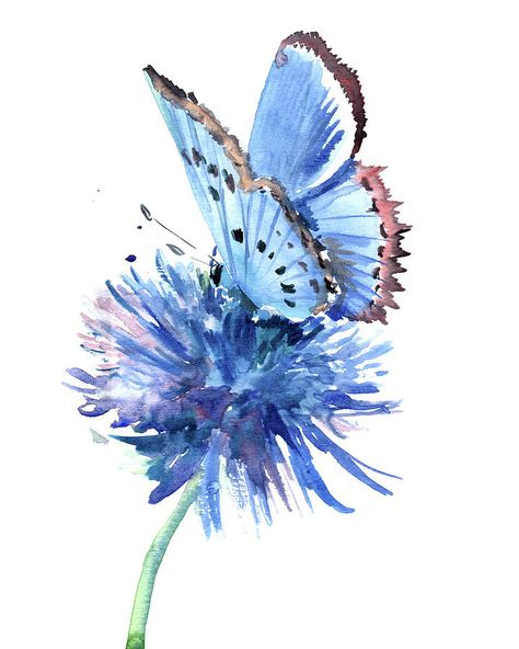 Butterfly Painting - Blue Butterfly And Blue Flower by Suren Nersisyan