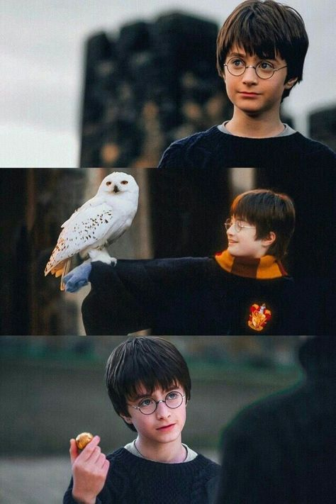 #wattpad #fanfic Imaginas   One-shots   Shiping   Imágenes   Harry Potter = Esto All the shit of Harry Potter (Se aceptan peticiones)