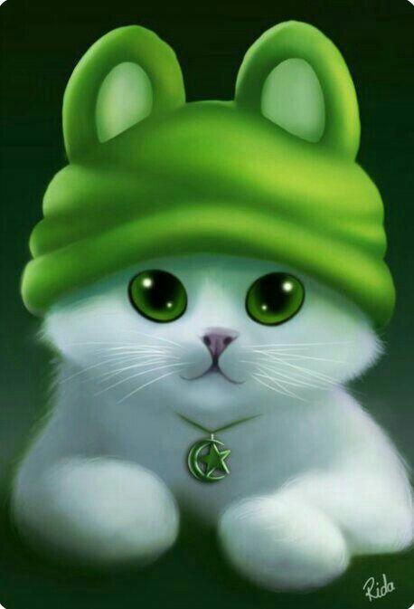 اووووووه Cute Cat Wallpaper Cat Wallpaper Cute Animal Drawings