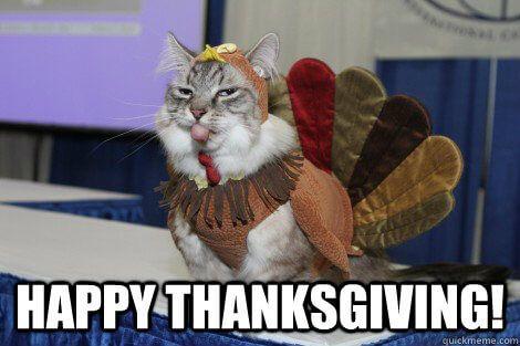 Funny Thanksgiving Meme Happy Thanksgiving Memes Cats Happy Cat