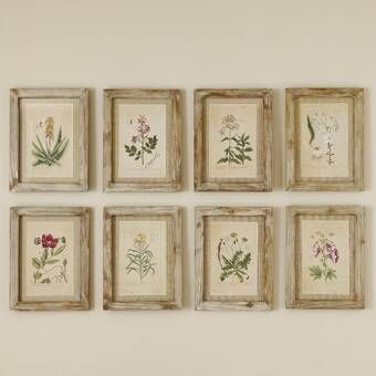 Wild Flower Botanical 12 Piece Picture Frame Print Set On Paper Reviews Joss Main Framed Botanical Prints Garden Frame Botanical Prints