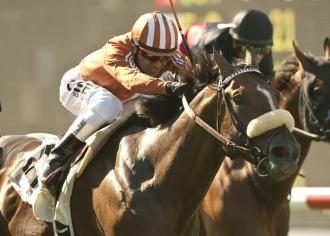 Del Mar Derby gets 24 entrants, including Gervinho | thoroughbreds ...