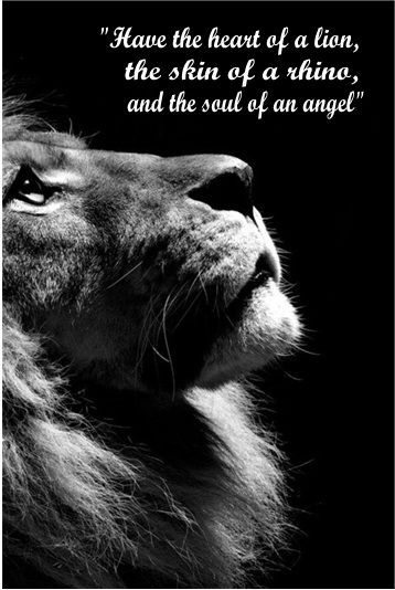 Have the heart of a lion, the skin of a rhino, and the soul of an angel