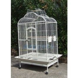 180cm Tall Metal Bird Parrot Cage Suitable For Large Size Parrots And Birds Similar Products Would Cost Over 700 In Parrot Cage Parrot Bird Cages For Sale