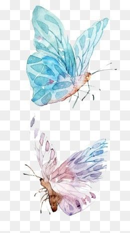 Free Download Watercolor Butterfly Png Image Iccpic Iccpic Com