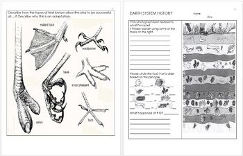 Evolution And Natural Selection Unit Homework With Images
