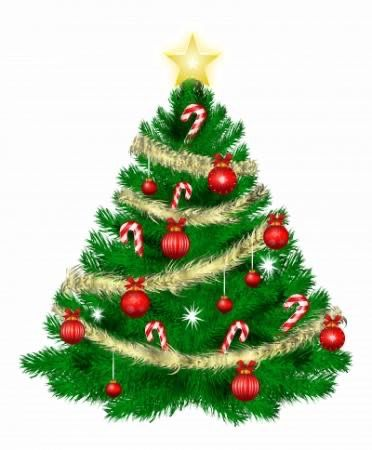 Pin By Hali Rose On Christmas Decor More Amazing Christmas Trees Christmas Tree Images Christmas Tree Clipart