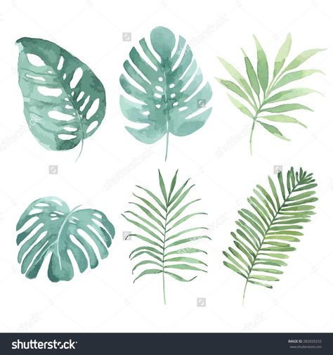 Watercolor Set With Tropical Leaves Vector Element For Your