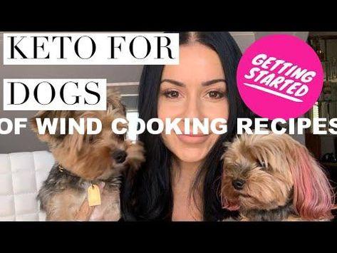Keto Diet For Dogs Dog Food Recipes Keto Diet Keto