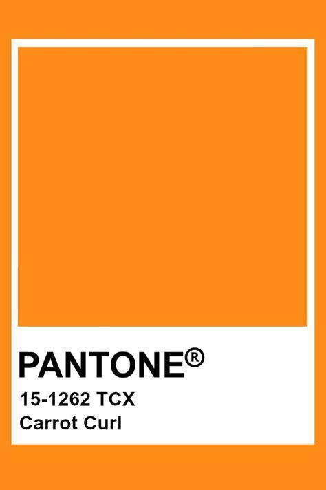 Pantone Carrot Curl