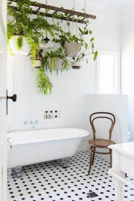 52 Ideas Bathroom Plants No Window Bathroom Plants Beautiful Bathrooms Trendy Bathroom