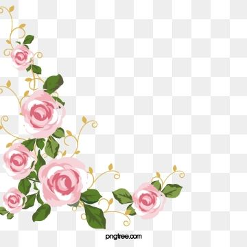 Pink Roses Flowers Pink Rose Png Transparent Clipart Image And Psd File For Free Download