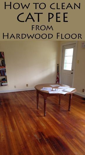 Cleaning Pet Urine Hardwood Floors, How To Get Cat Urine Out Of Laminate Flooring