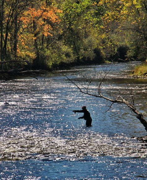 Here Are The 7 Best Places In Vermont To Go Fly Fishing Bestflyfishingtips Fly Fishing Fishing Photography Fishing Trip