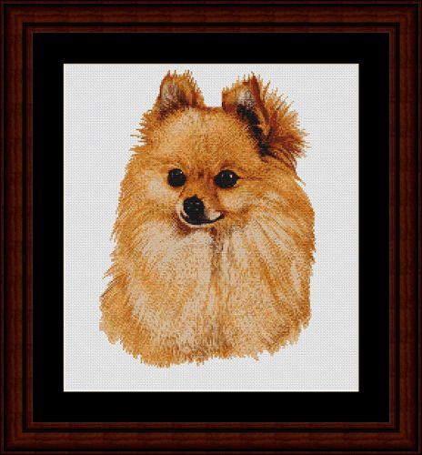 Pomeranian - Cross Stitch Collectibles fine art counted cross stitch pattern