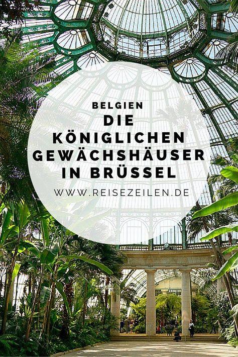 Schon Schrecklich Zugleich Konigliche Gewachshauser In Laken Reisen Belgien Urlaub Reiseziele
