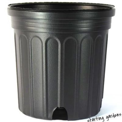1 Gallon Nursery Pot Qty 100 Black Trade Gallon 6 5 X 6 5 Not A Full Gal Black Nursery Baskets Pots Nursery Supplies