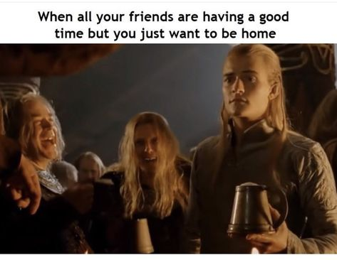"""Dank Lord Of The Rings Memes For The True Heads - Funny memes that """"GET IT"""" and want you to too. Get the latest funniest memes and keep up what is going on in the meme-o-sphere. Funny Memes For Him, Funny Relatable Memes, Funniest Memes, Stupid Memes, Head Memes, O Hobbit, Tauriel Hobbit, J. R. R. Tolkien, Thranduil"""