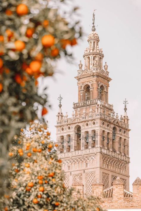11 Best Things To Do In Seville, Spain - - Perched within the Andalusia region, Seville is one of the country's most gorgeous places to visit. And, of course, being the capital of the region there are so many of the best things to do. Places To Travel, Places To Visit, Travel Diys, Travel Essentials, Travel Flights, Travel Outfits, Budget Travel, Places In Spain, Seville Spain