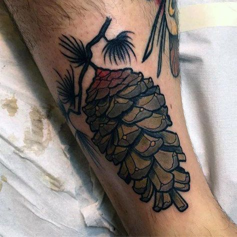 Cool Neo Traditional Pine Cone Male Tattoos - tattoos and body art - Tattoo