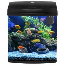 Future Goby Tank Gorgeous Greenery In This Example Aquarium Akuarium Tank