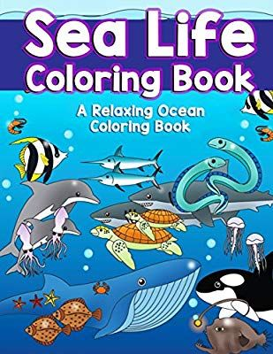 Amazon Com Sea Life Coloring Book A Relaxing Ocean Coloring Book For Adults Teens And Kids With Dolphins Animal Coloring Books Coloring Books Ocean Animals