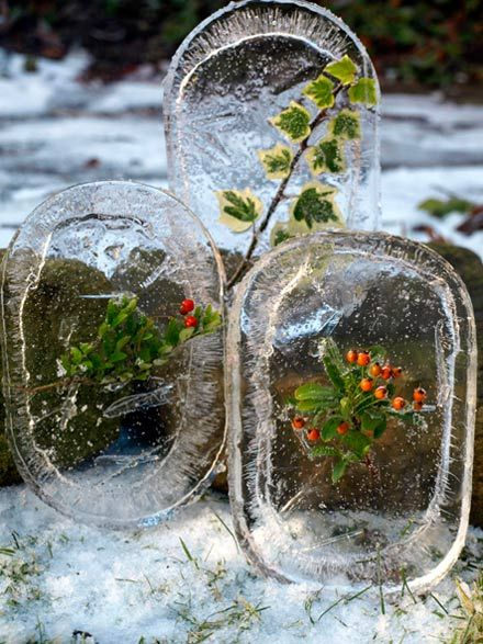 Winter Art for Kids. Get a Lid, fill it with water and something from nature, freeze it over night, and look at the great art it makes for winter fun.