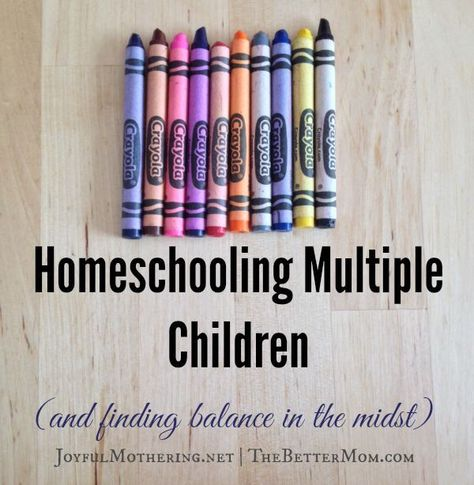 How to Homeschool Multiple Ages — The Better Mom