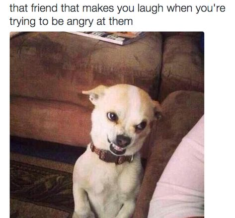 """The friend who always knows how to cheer you up, even when you're upset. 