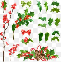 Various Styles Vector Christmas Tree Decoration Vector Christmas Holly Leaf Png Transparent Clipart Image And Psd File For Free Download Christmas Vectors Christmas Tree Decorations Tree Decorations