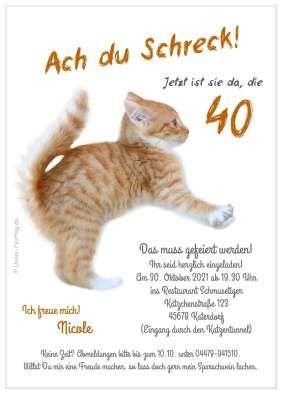 Einladungskarte Lama Einladungskarten 40 Geburtstag Einladung