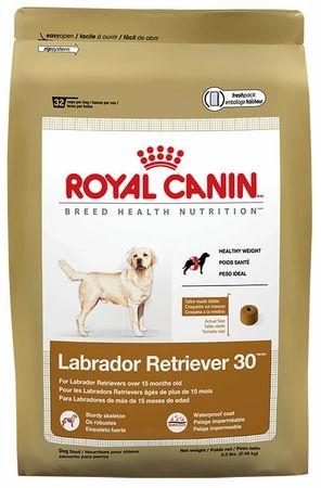 Royal Canin Breed Health Nutrition Labrador Retriever 30 Lb Dry Dog Food Dog Food Recipes Food Animals