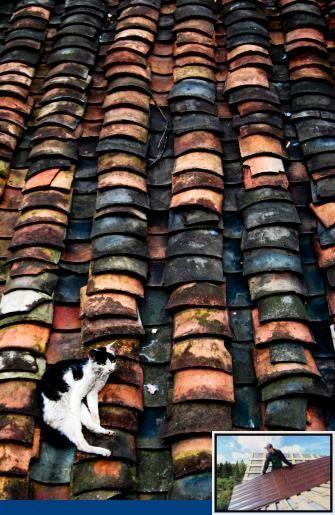 Westform Metal Roofing Colors And Metal Roof Coating Colors Clay Roofs Clay Roof Tiles Metal Roof Coating