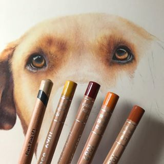 I M Using Some Of The Beautiful Caran D Ache Luminance Pencils On