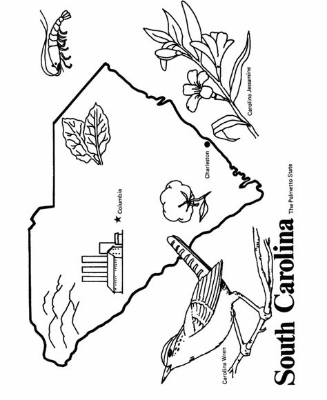 South Carolina State Outline Coloring Page North Carolina Flag