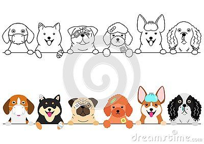 Set Of Small Dogs Border With And Without Colors Poor Unsound Dogs In A Row Dog Crafts Dog Clipart Cute Drawings