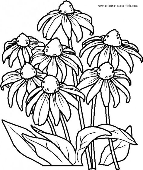 65 Ideas Flowers Drawing Pattern Colouring Pages