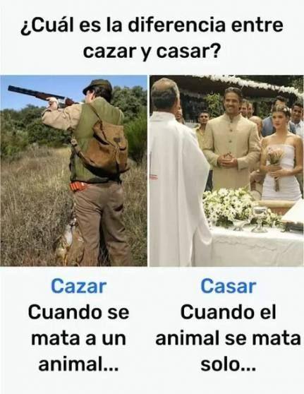 18 Ideas Memes En Espanol Parejas Espanol Ideas Memes Parejas Memes Divertidos Memes Graciosos Chiste En Espanol