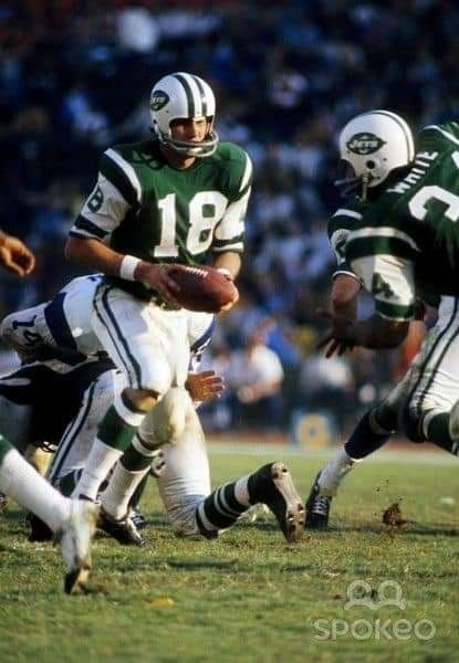 Image result for al woodall jets