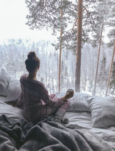 The Londoner » Living at The Treehotel, Sweden