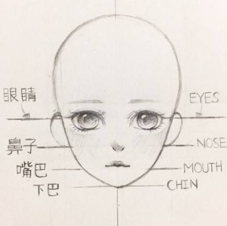 Best How To Draw Manga Style Faces 67 Ideas How To Draw Anime Eyes Anime Drawings Anime Drawings Tutorials