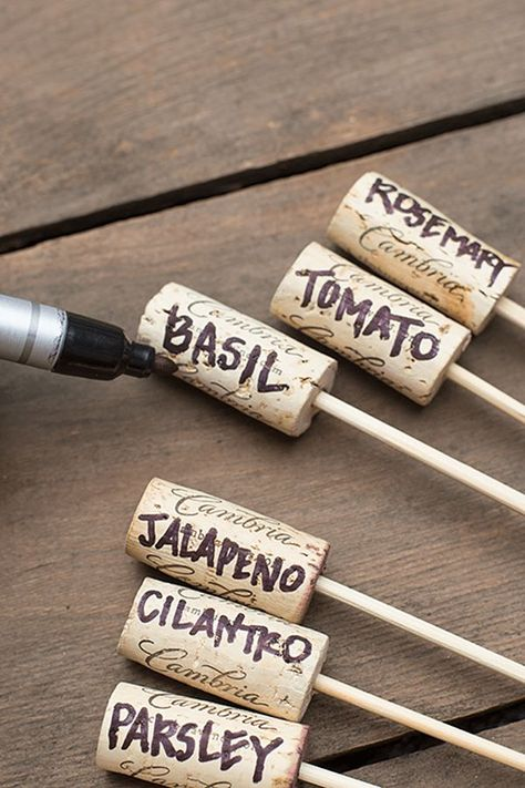 Gardening Herbs Simple Wine Cork Garden Markers - Creating DIY garden crafts is one of the easiest ways to decorate your outdoor space on a budget. Enjoy the best ideas and designs! Color Crafts, Garden Crafts, Diy Crafts, Garden Ideas Diy, Creative Garden Ideas, Simple Backyard Ideas, Garden Lighting Ideas, Garden Diy On A Budget, Recycled Crafts
