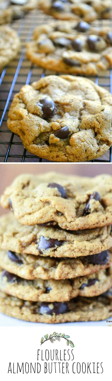 Flourless Almond Butter Chocolate Chip Cookies -- gluten free and oh so delicious! http://theviewfromgreatisland.com/2013/09/minimal-mondayflourless-almond-butter-chocolate-chips.html