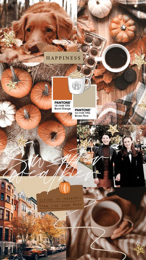 Free Autumn Wallpapers For You To Download - Corrie Bromfield