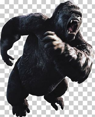 King Kong Ape Godzilla Skull Island Toy Png Clipart 2017 Action Figure Action Toy Figures Ape Common Chimpanzee Free Png Kong Godzilla King Kong Godzilla