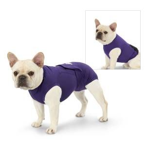 Stay Put Unisex Dog Diaper Great Gear And Gifts For Dogs At Home