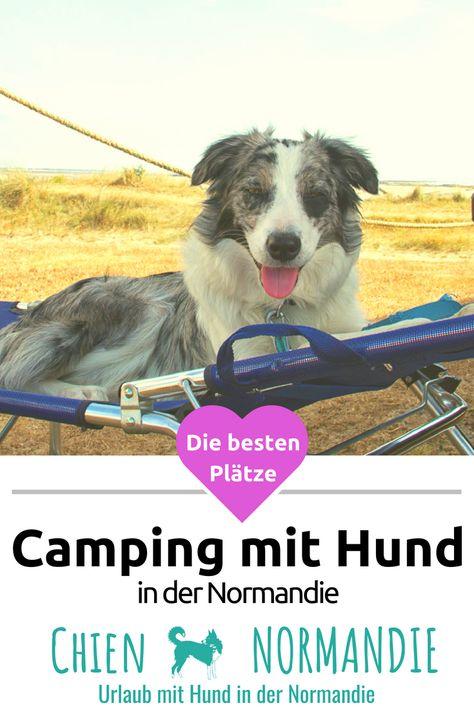 Campingplatze Hunde Urlaub Mit Hund Und Camping