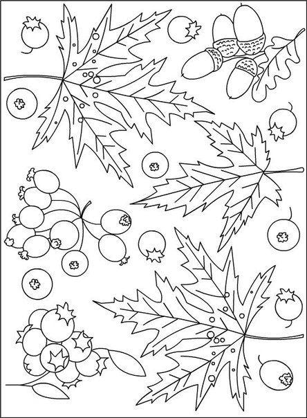 Krasnaya Nit Vyshivka I Rukodelie Free Coloring Pages Fall Coloring Pages Leaf Coloring Page