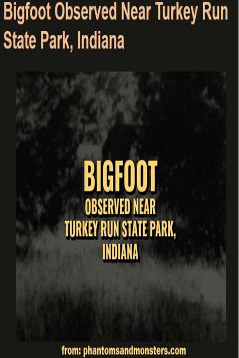 Bigfoot Unicorn UFO Sport Waist Bag Fanny Pack Adjustable For Hike